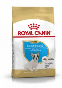 French Bulldog Junior Royal Canin karma sucha szczeniaki 10kg