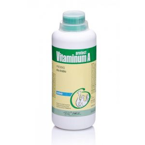 Vitaminum A Protect (witamina A) 1000ml